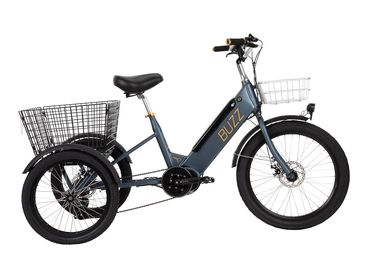 Buzz E-Trike