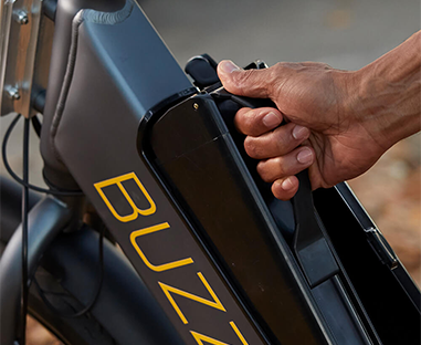 buzz-e-bike